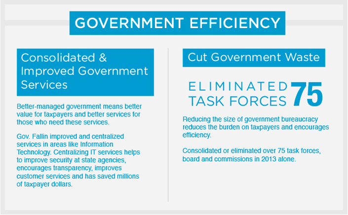 Government Efficiency